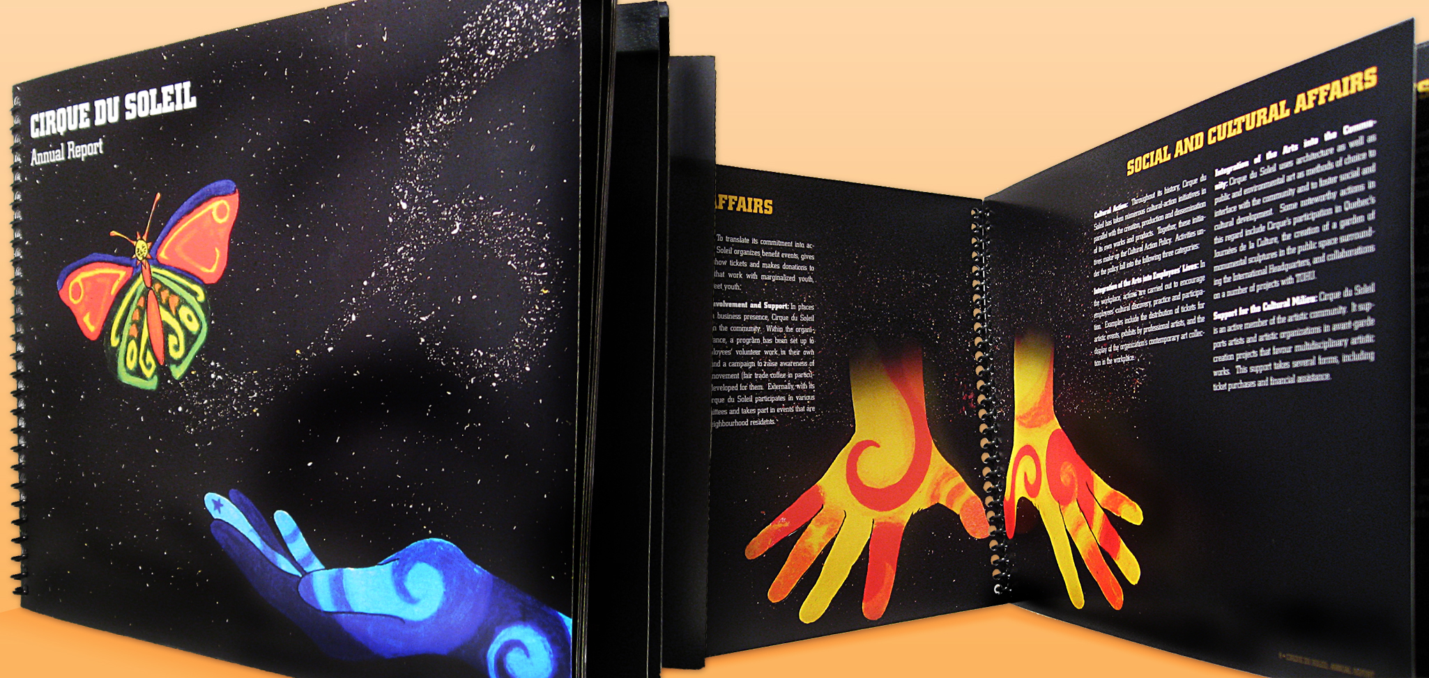 Annual Report Concept For Cirque Du Soleil