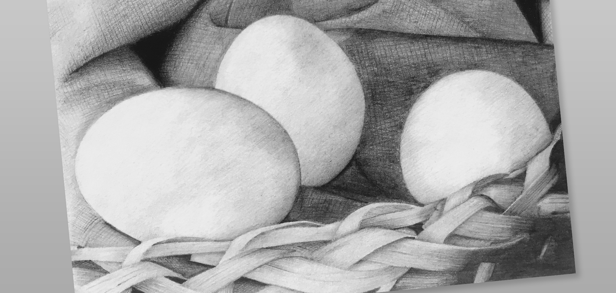 Traditional Pencil Illustrations